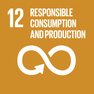 icon for SDG 12 Responsible Consumption and Production
