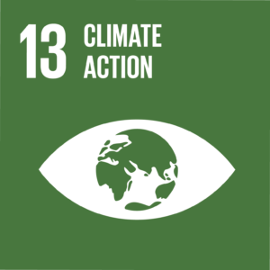 icon for SDG 13 Climate Action