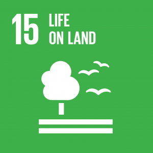 icon for SDG 15 Life on Land