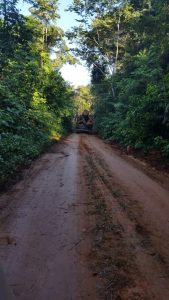 a logging road used for selective logging