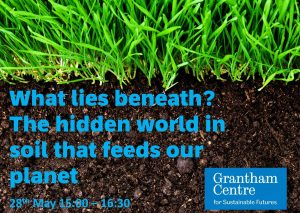 free sustainability webinars: poster for What lies beneath