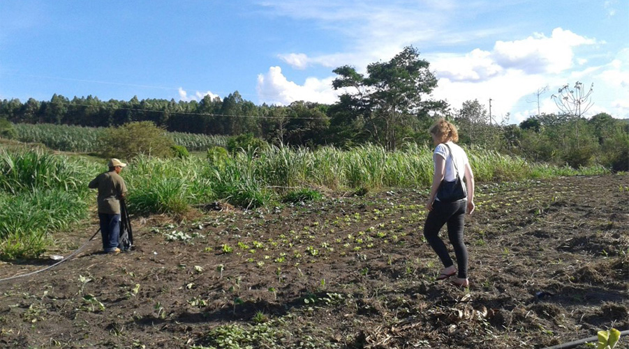 Cecilie Dyngeland in the field: social protection and sustainabilty