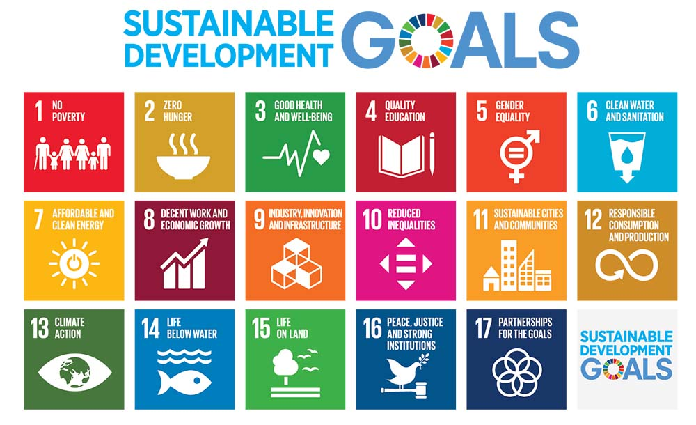 the UNs SDGs grid