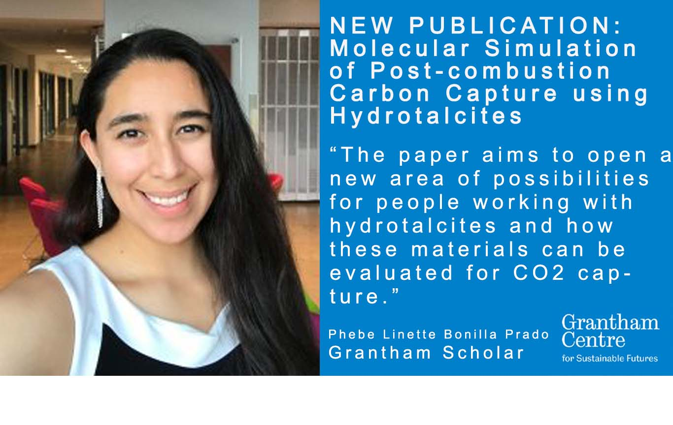 carbon capture hydrotalcites